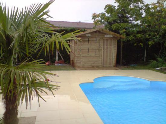 Pool House piscine en pin traité autoclave classe 4