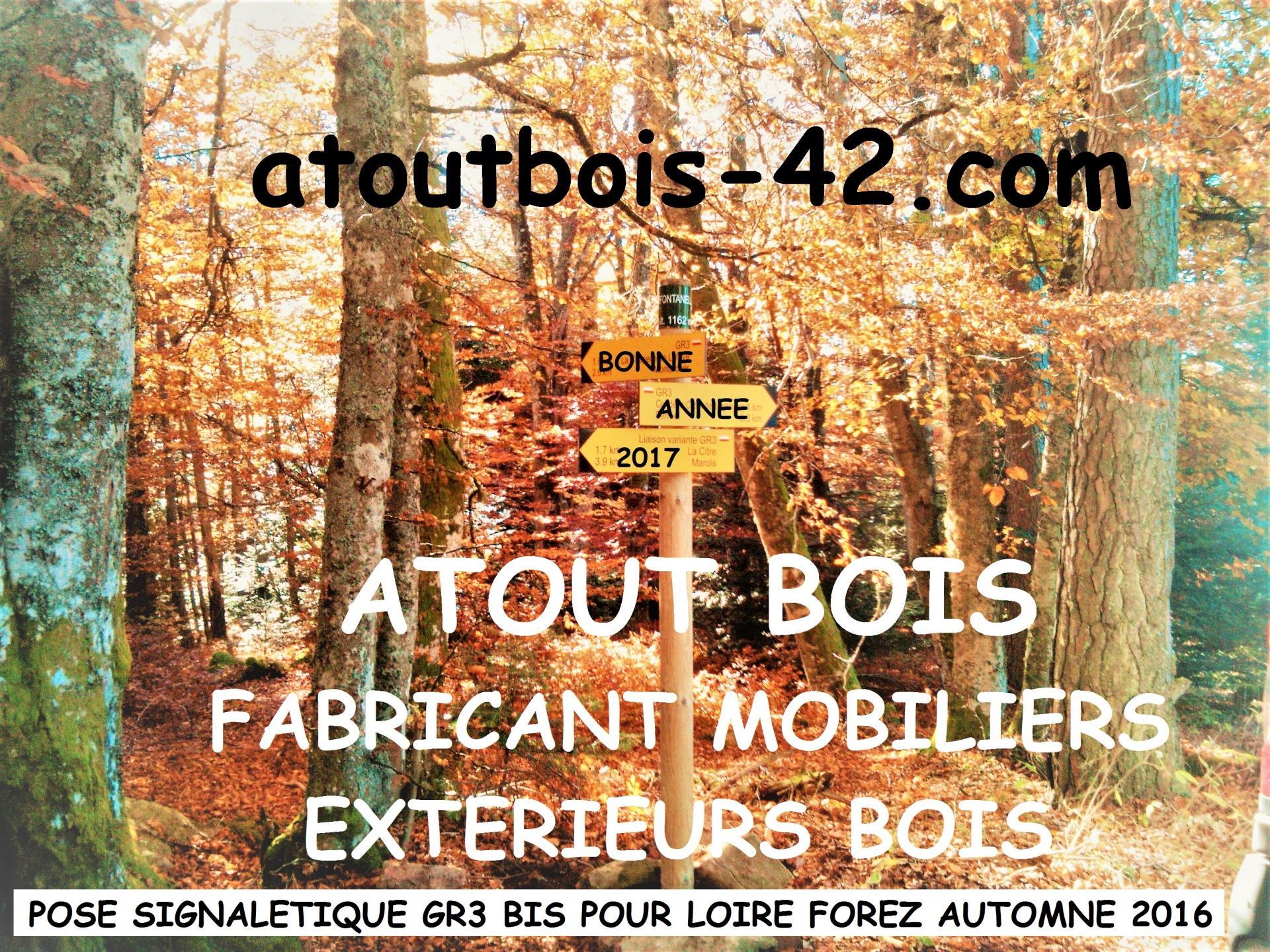 Atout bois voeux 2017